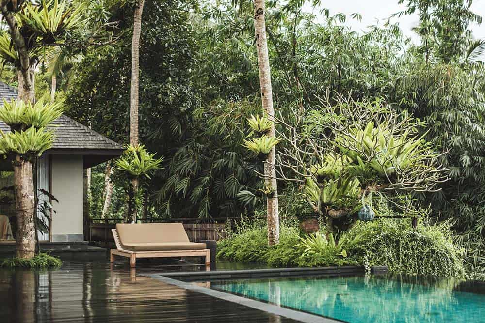 This is the back of the house with a wooden deck flooring leading to the infinity pool that is adorned by the surrounding lush landscape of tall trees and shrubs.