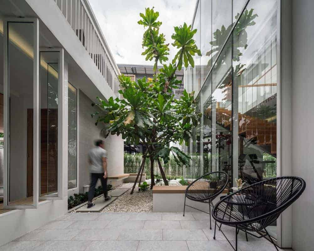 This is a close look at the inner courtyard of the house surrounded by the glass walls of the house adorned with a large tree in the middle planted on pebbled soil with a walkway and a patio area.