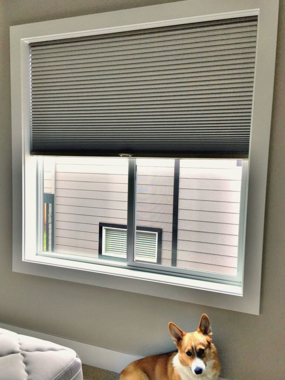 A focused look at this sliding glass window featuring a window shade.