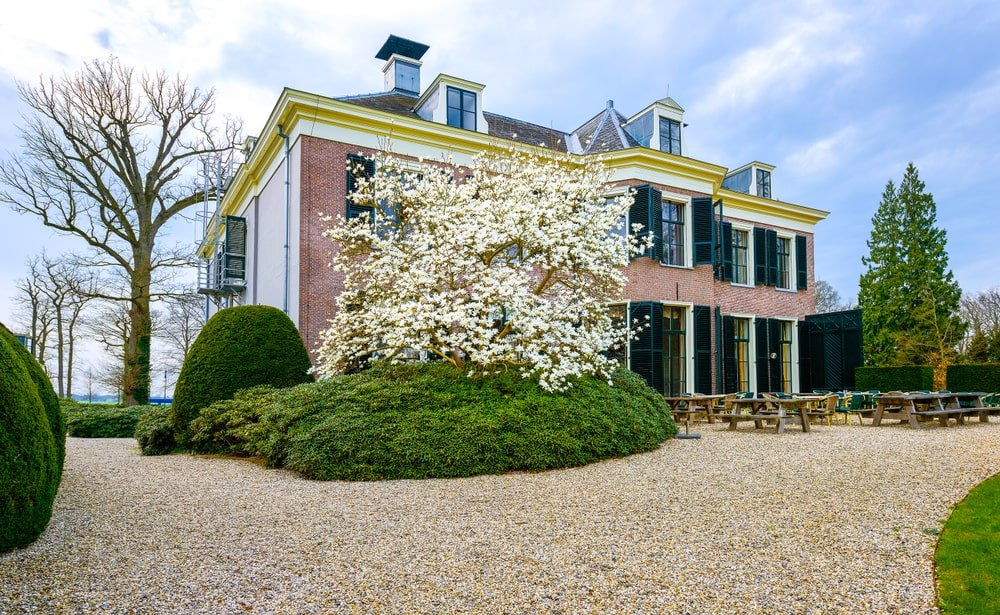 The beauty of this two-story home is further enhanced by the Cottage-style landscaping of bright pebbled grounds that is contrasted by the deep green shrubbery and the brilliant white flowering tree that sets a nice background for the outdoor dining area.