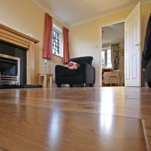 Home lounge with laminate flooring.