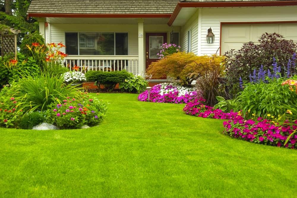 Manicured house garden