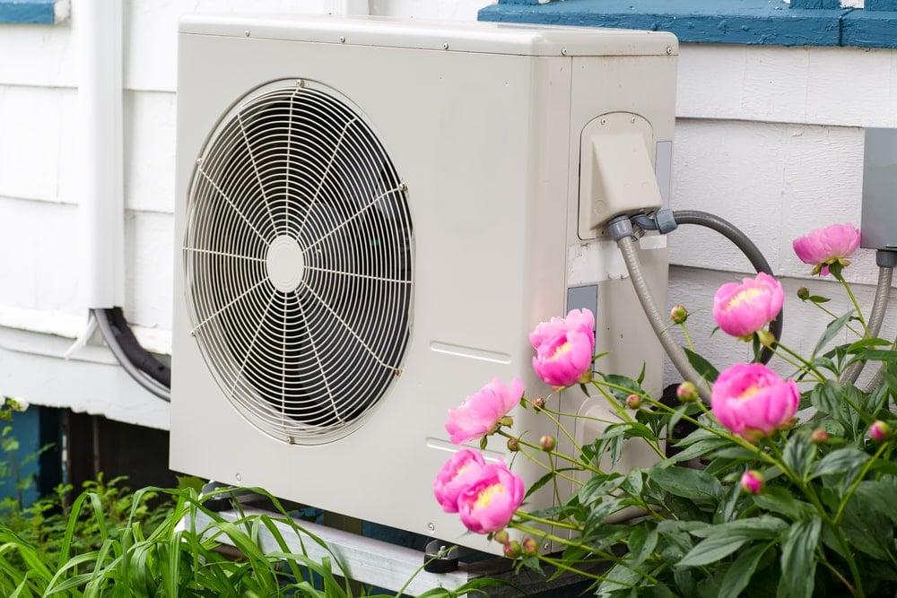 An outdoor heat pump beside pink flowers.