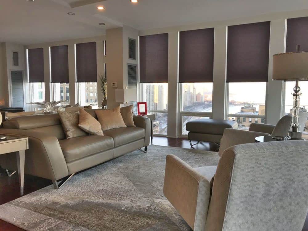 Large living space featuring a modern sofa set and a large area rug covering the hardwood flooring. The windows surrounding the room also feature window shades.