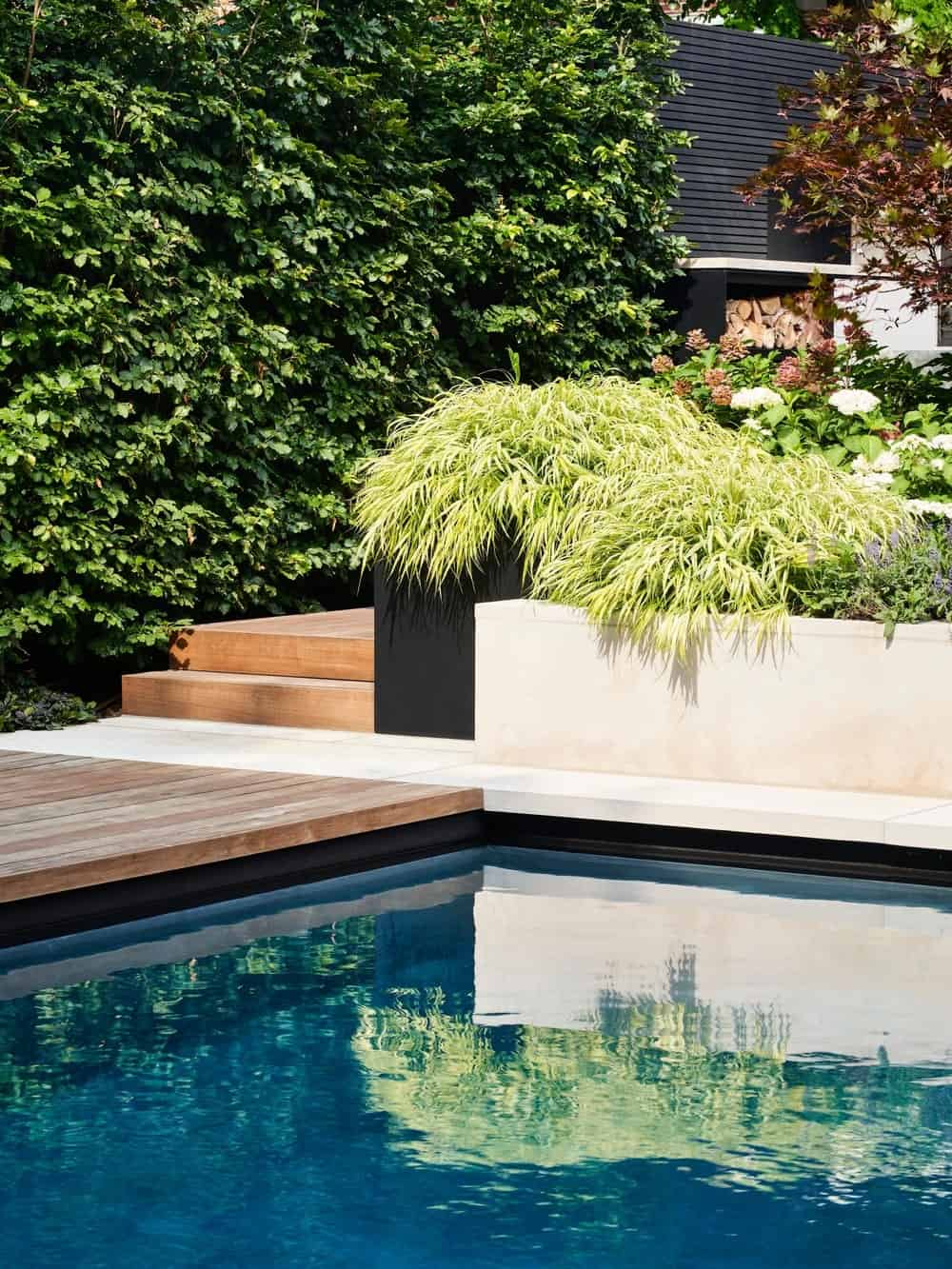 Backyard pool in the Forest Hill Garden & Pavilion designed by Amantea Architects.