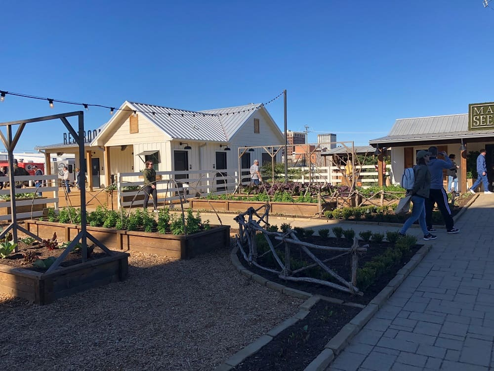 A beautiful outdoor garden within the Magnolia Market area with planters and rope lights.