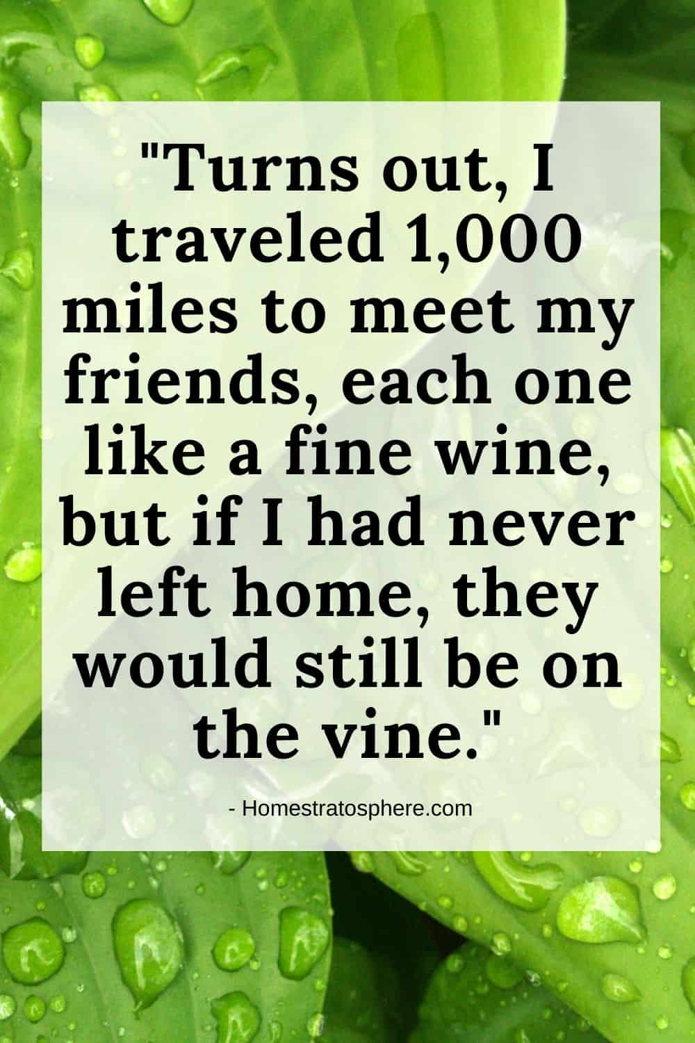 """Turns out, I traveled 1,000 miles to meet my friends, each one like a fine wine, but if I had never left home, they would still be on the vine."""