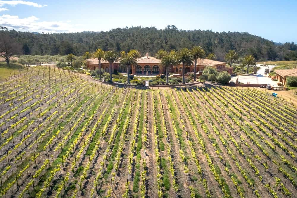 This aerial shot shows the large vineyard that comes with the mansion filled with 6,200 Pinot Noir vines. Images courtesy of Toptenrealestatedeals.com.