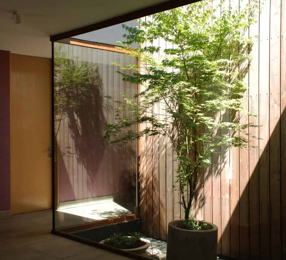Green space inside the Golfo de Darien House designed by Cristobal Vial Arquitectos.