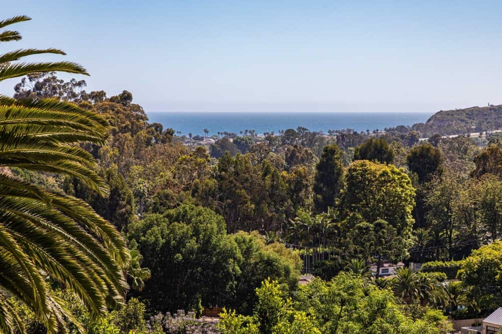 This view focuses on the rich nature surrounding the property. Images courtesy of Toptenrealestatedeals.com.