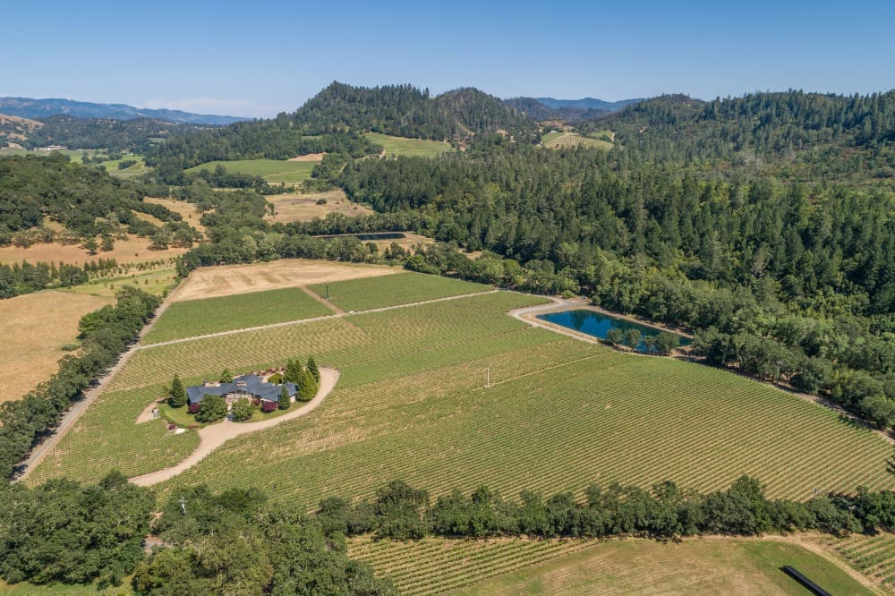 Aerial view of the property showcasing its vastness and gorgeous landscaping. Images courtesy of Toptenrealestatedeals.com.