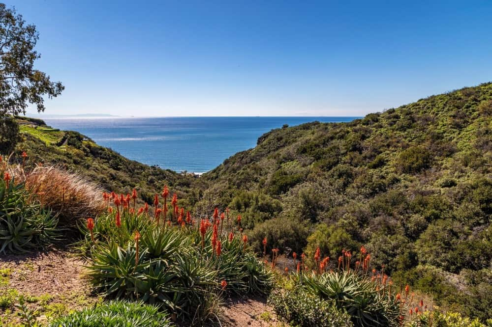 The sea can also be viewed from the neighborhood's gorgeous landscape. Images courtesy of Toptenrealestatedeals.com.