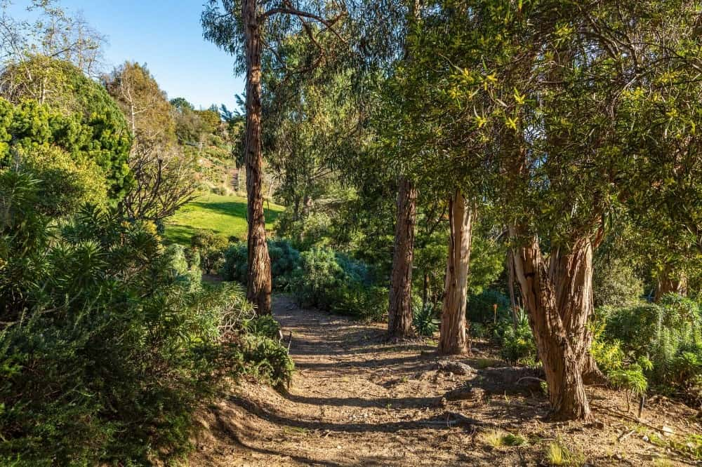 A look at this walkway leading to the home's garden and lawn area. Images courtesy of Toptenrealestatedeals.com.