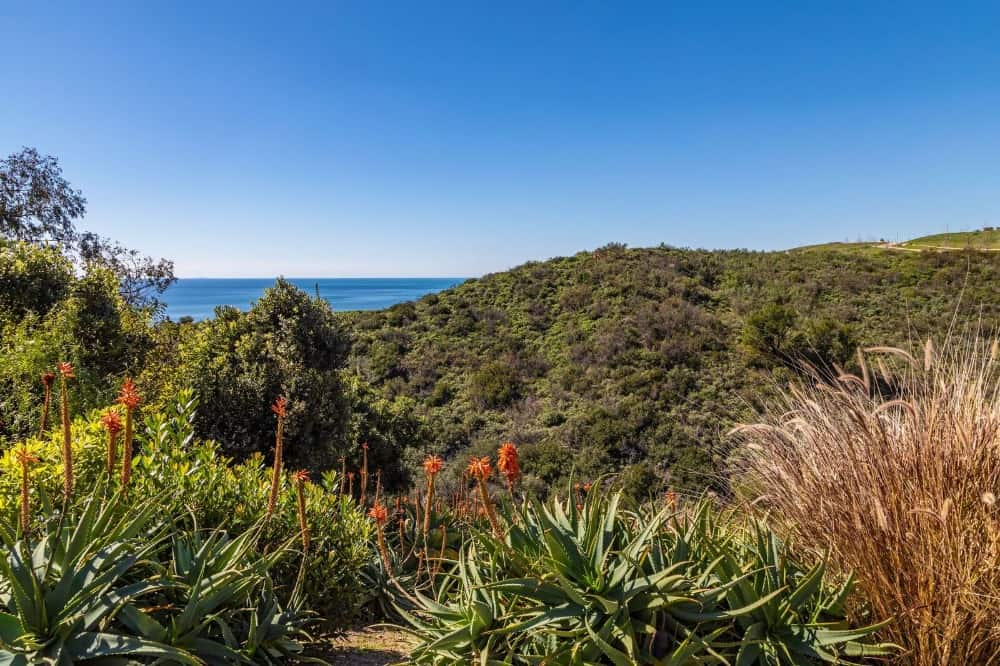 A focused view at the lush landscape that surrounds the property. Images courtesy of Toptenrealestatedeals.com.