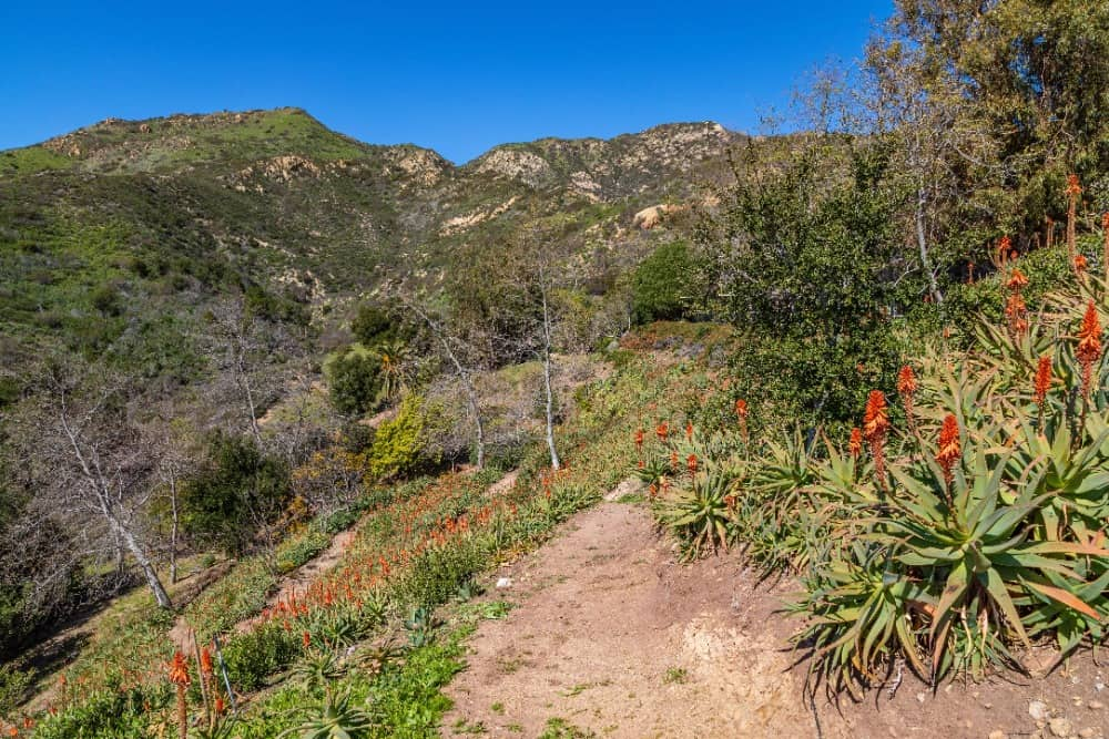 A pathway to the gorgeous landscape surrounding the home. Images courtesy of Toptenrealestatedeals.com.