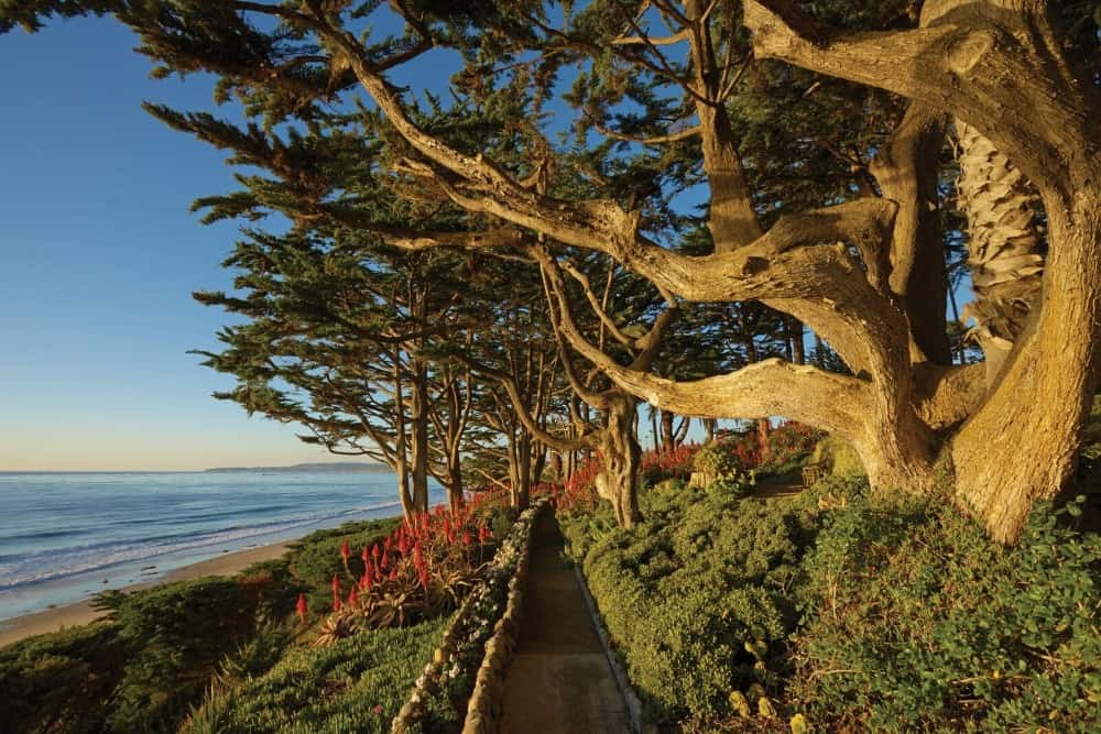 This walkway offers a gorgeous view of the Pacific Ocean and is surrounded by the amazing landscaping. Images courtesy of Toptenrealestatedeals.com.