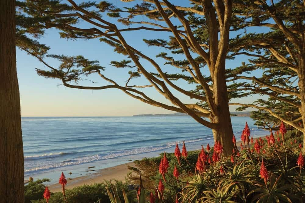 A view at the gorgeous landscaping and the breathtaking Pacific Ocean. Images courtesy of Toptenrealestatedeals.com.
