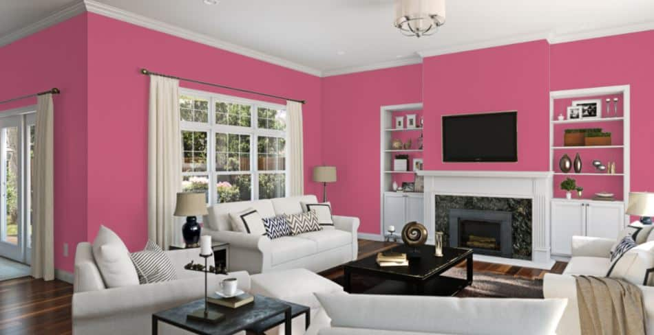 Dragon Fruit by Sherwin-Williams