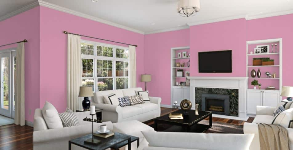 Haute Pink by Sherwin-Williams