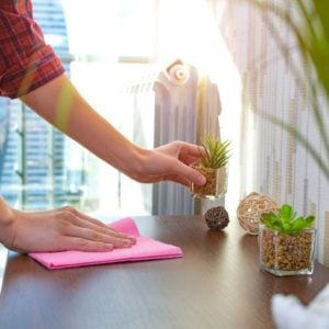 A woman wiping a wooden surface with small decorative plants.