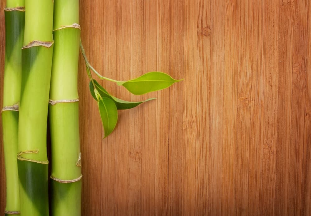Pieces of bamboo placed on a hardwood flooring background.