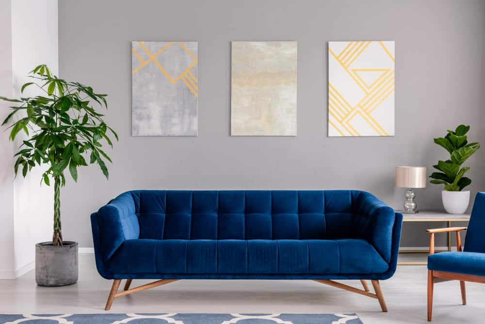 A living room with gray walls accented with wall-mounted artworks and a lovely velvet couch.