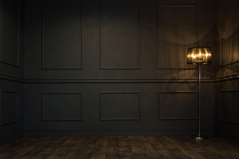 A simple foyer with black walls complemented by the standing lamp.
