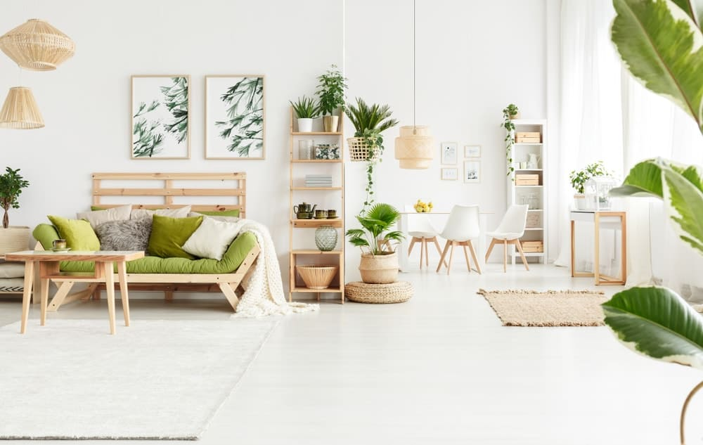 A bright and white living room complemented by the various potted plants and artworks of plants.
