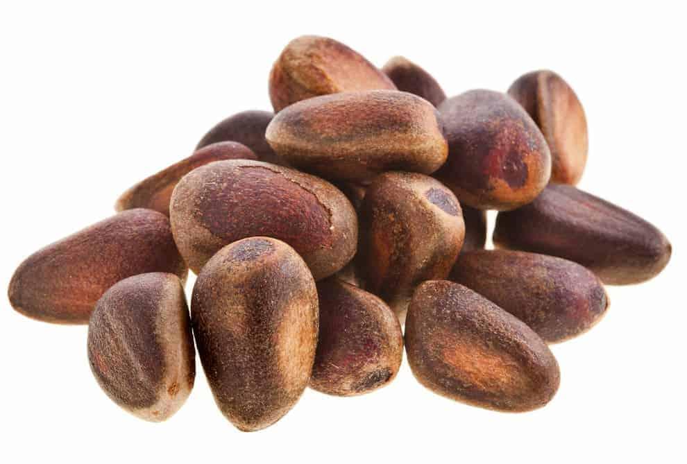 Cecar nuts