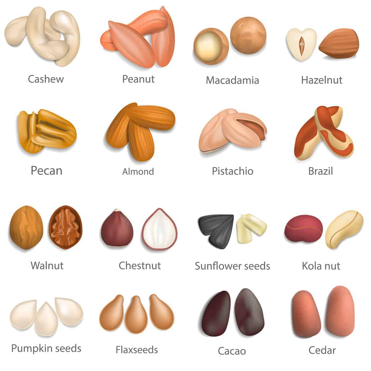 Chart setting out the different nut options