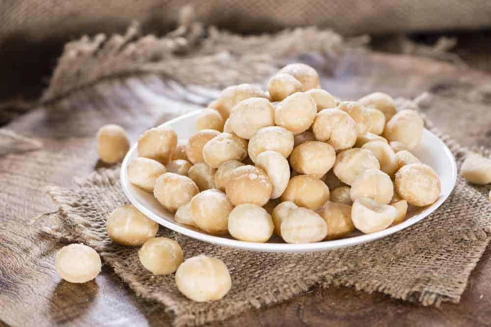 Bowl of macadamia nuts
