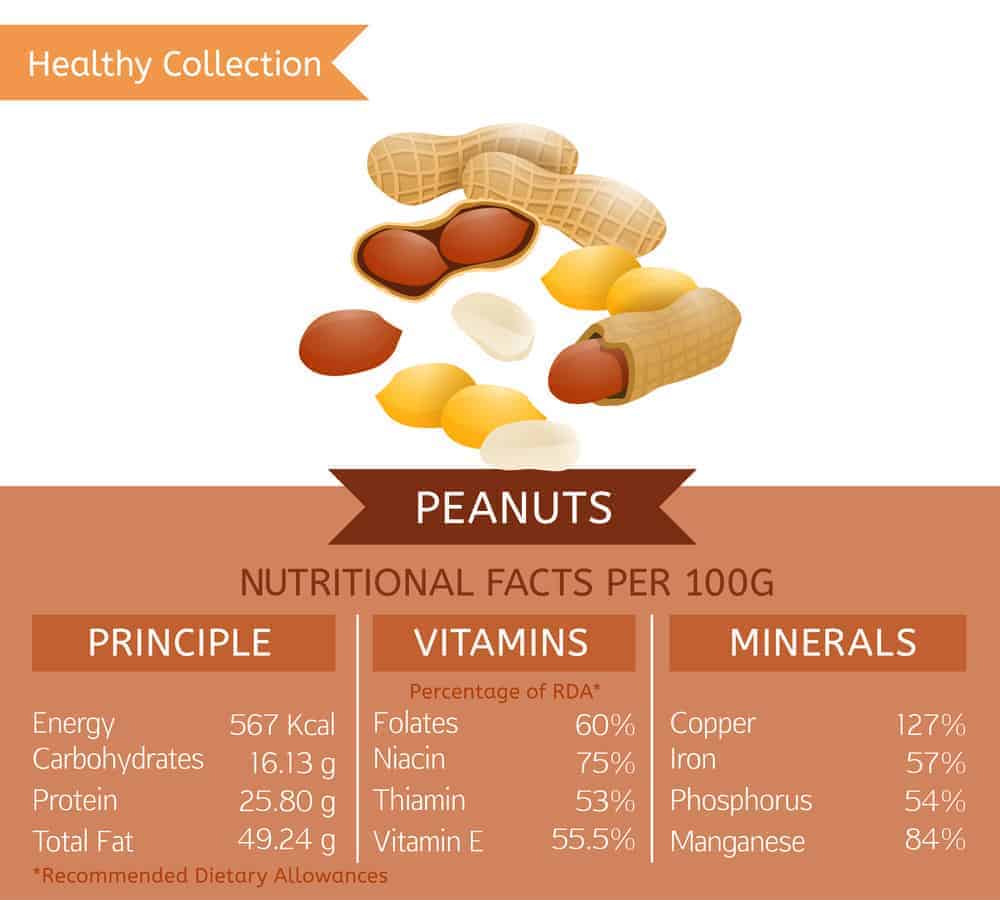 Peanut nutritional facts chart