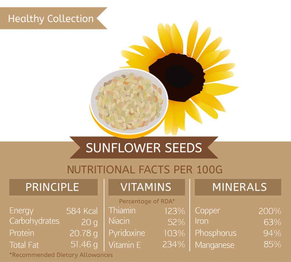 Sunflower seed nutritional facts chart
