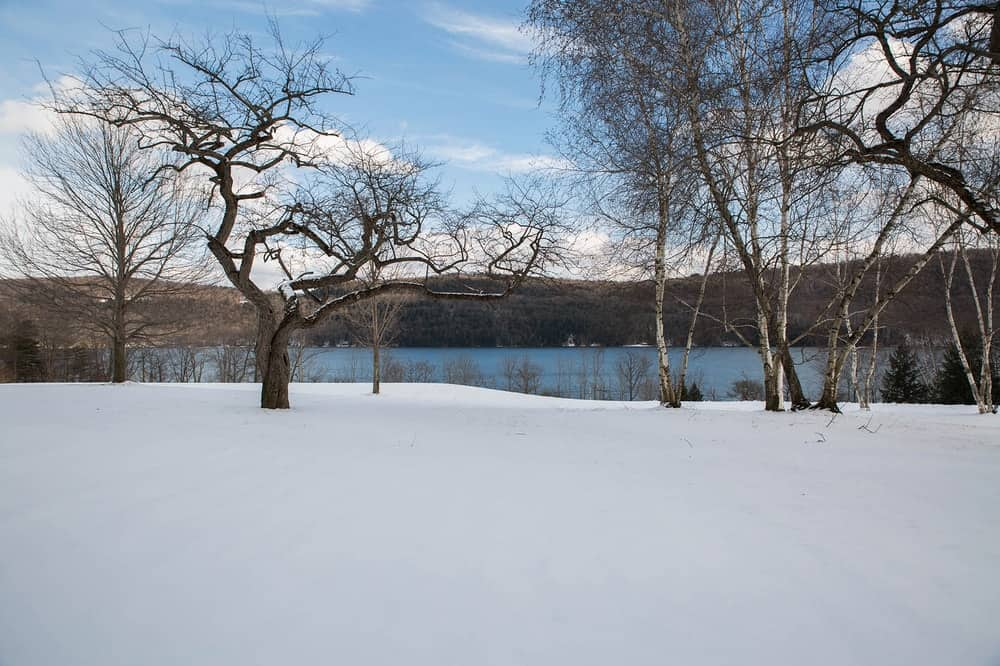 This is a view of the lake view in winter. The tall trees are now bare and the green grass lawn is replaced with a blanket of powdery snow. Images courtesy of Toptenrealestatedeals.com.