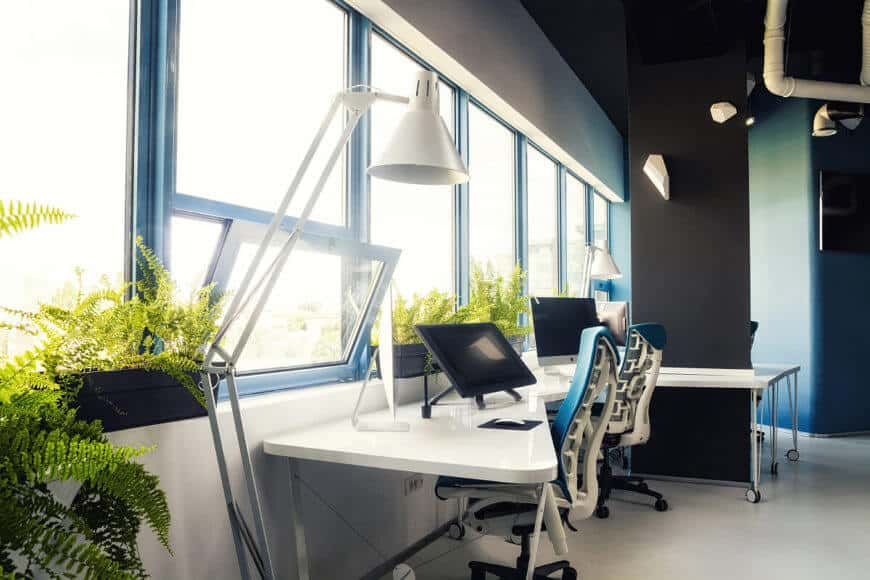 Here we can see the foliage and bright sunlight filtering through the line of windows in the main office space. This open environment feels fresh, and won't leave employees feeling trapped like cubicles typically do.