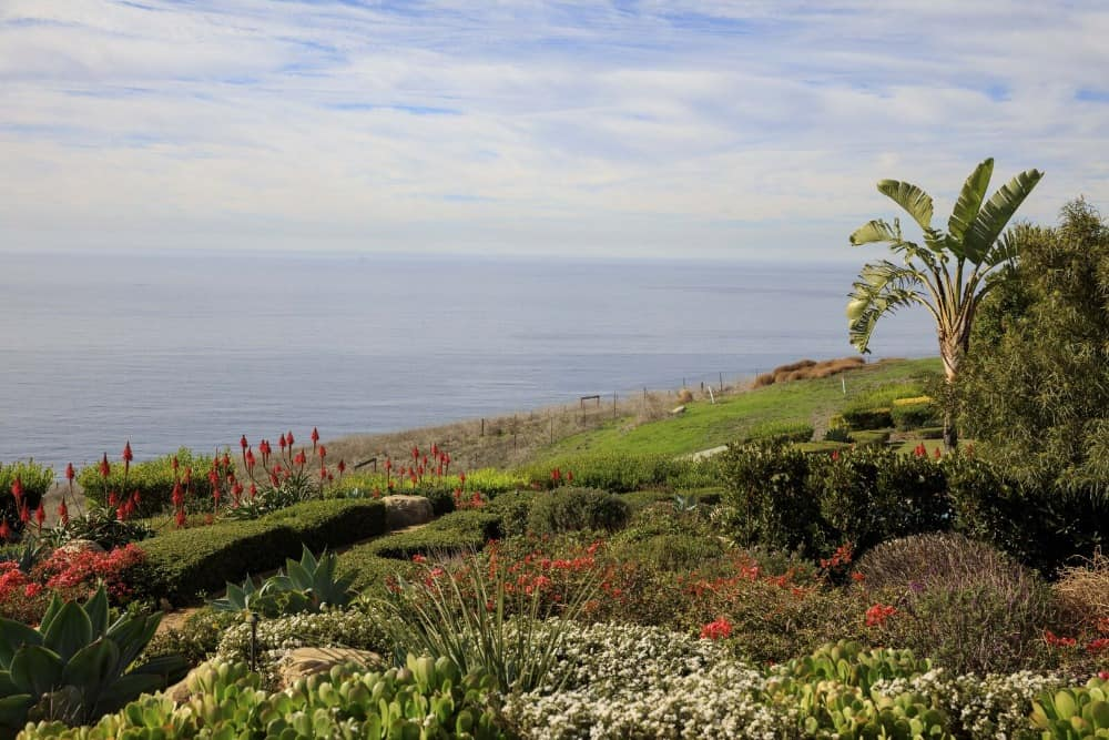 Another look at the house's backyard with its lush garden plants, flowers and trees, along with a gorgeous ocean view. Images courtesy of Toptenrealestatedeals.com.