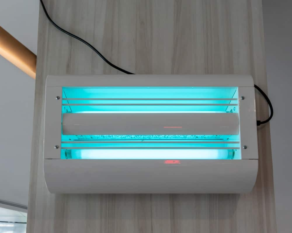 A wall-mounted electrical insect killer with UV lamps.