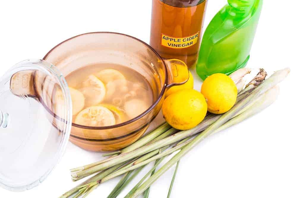 A home-made concoction of apple cider vinegar, lemon and lemon grass to repel bugs.