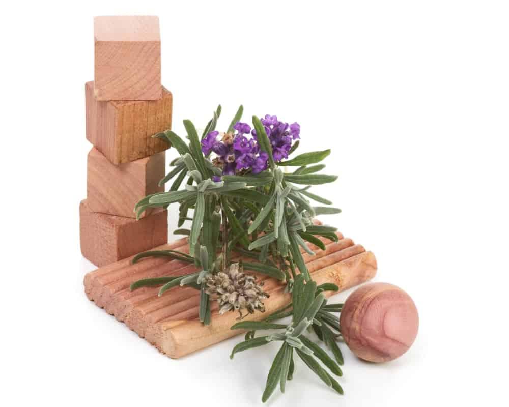 Cedar moth blocks and ball adorned with fresh lavender.