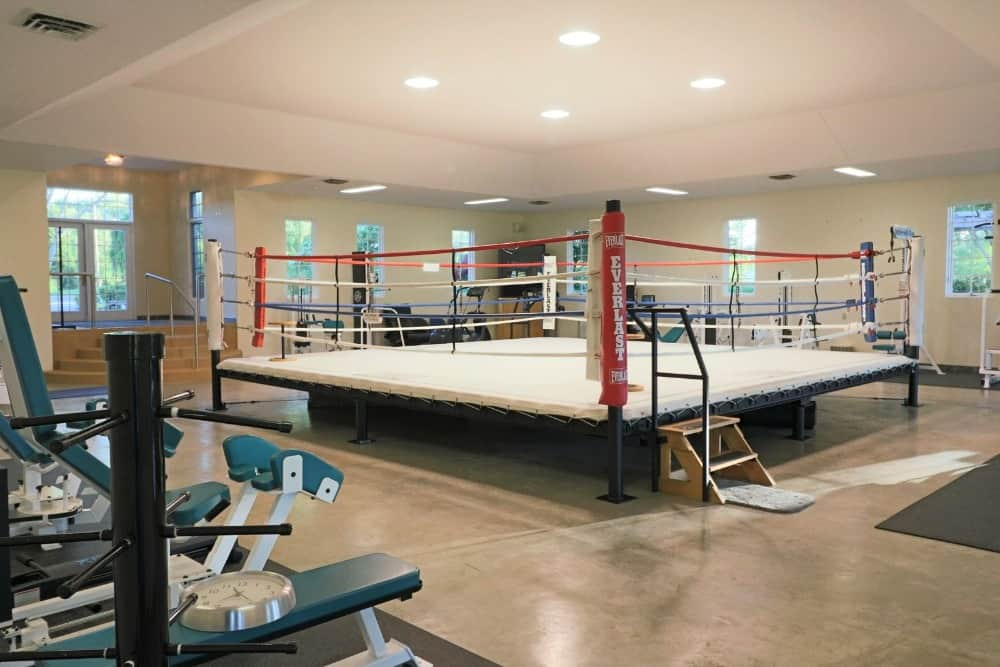 The home gym is large and is complete with gym equipment. There's a training boxing ring in the middle as well. Images courtesy of Toptenrealestatedeals.com.