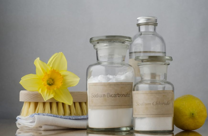A set of natural cleaning ingredients like salt and vinegar.