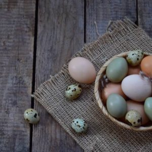 Different types of eggs on a wooden surface.