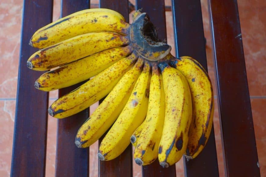 A bunch of barangan bananas.