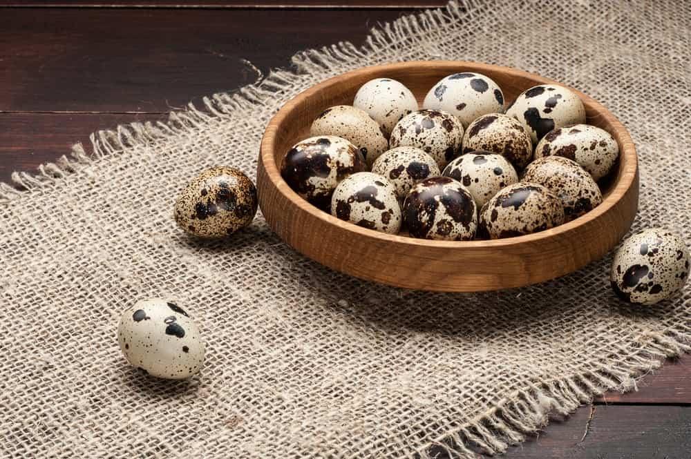 A wooden bowl of fresh quail eggs.