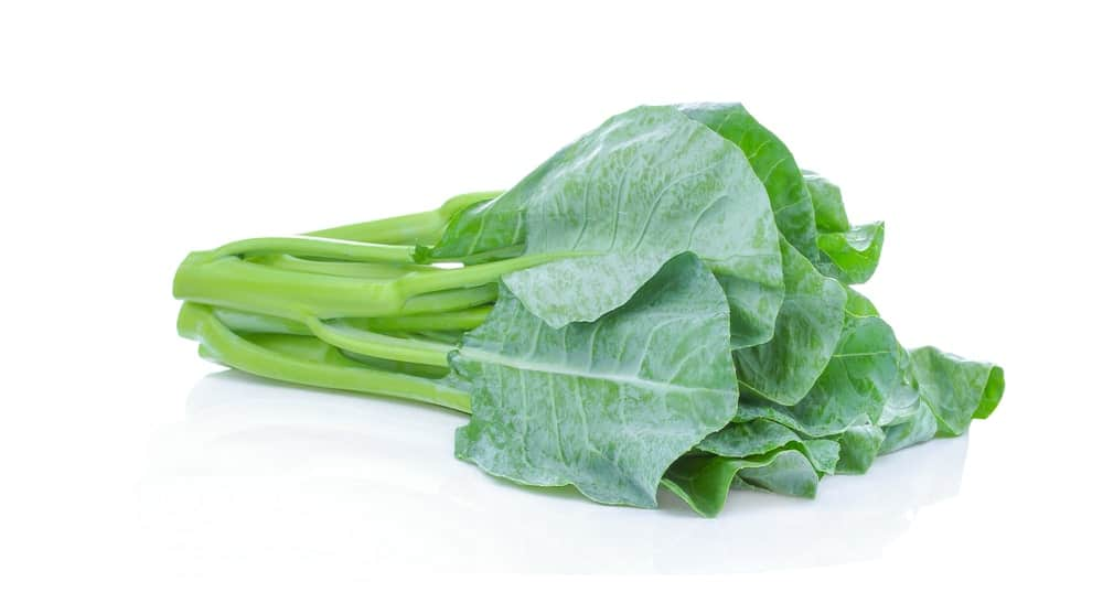 Chinese kale against a white background.