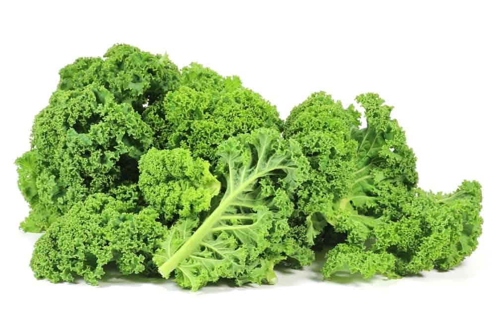 A bunch of curly kale.