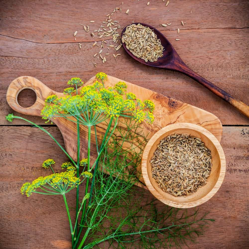 Scattered fennel seeds, leaves and flowers on a wooden bowl, spoon, and chopping board on a wooden background.