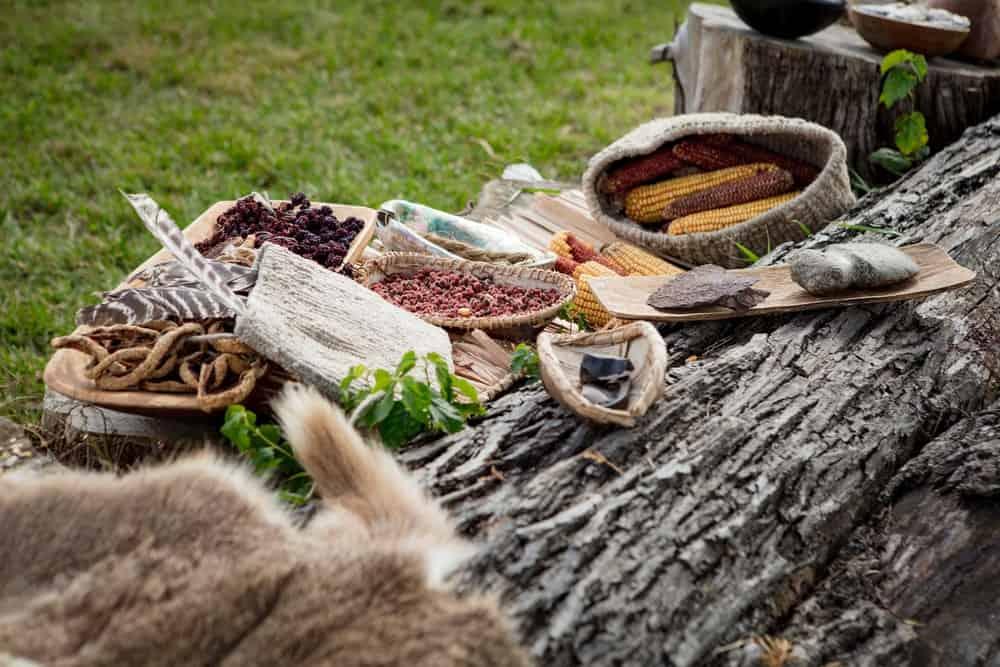 Various types of native meal set beside a fallen log on green grass.