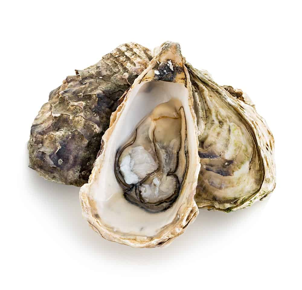 A bunch of pacific oysters.