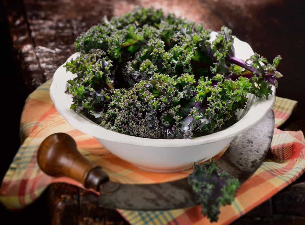 A bowl of red Russian kale.